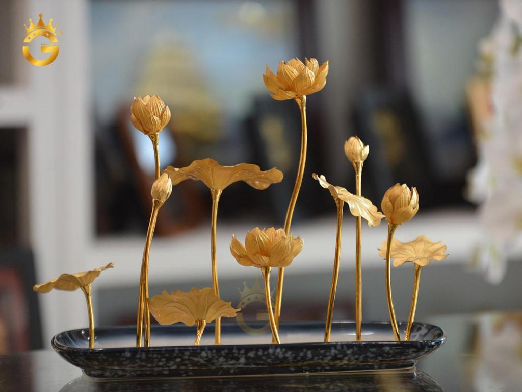 chau-hoa-sen-dep-tinh-xao (1)