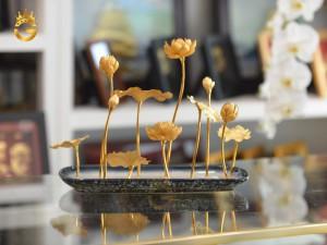 chau-hoa-sen-dep-tinh-xao (2)